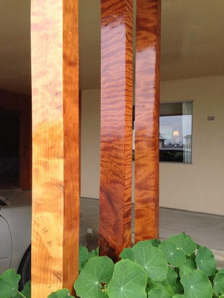 Curly Redwood2