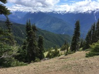 Hurricane Ridge1
